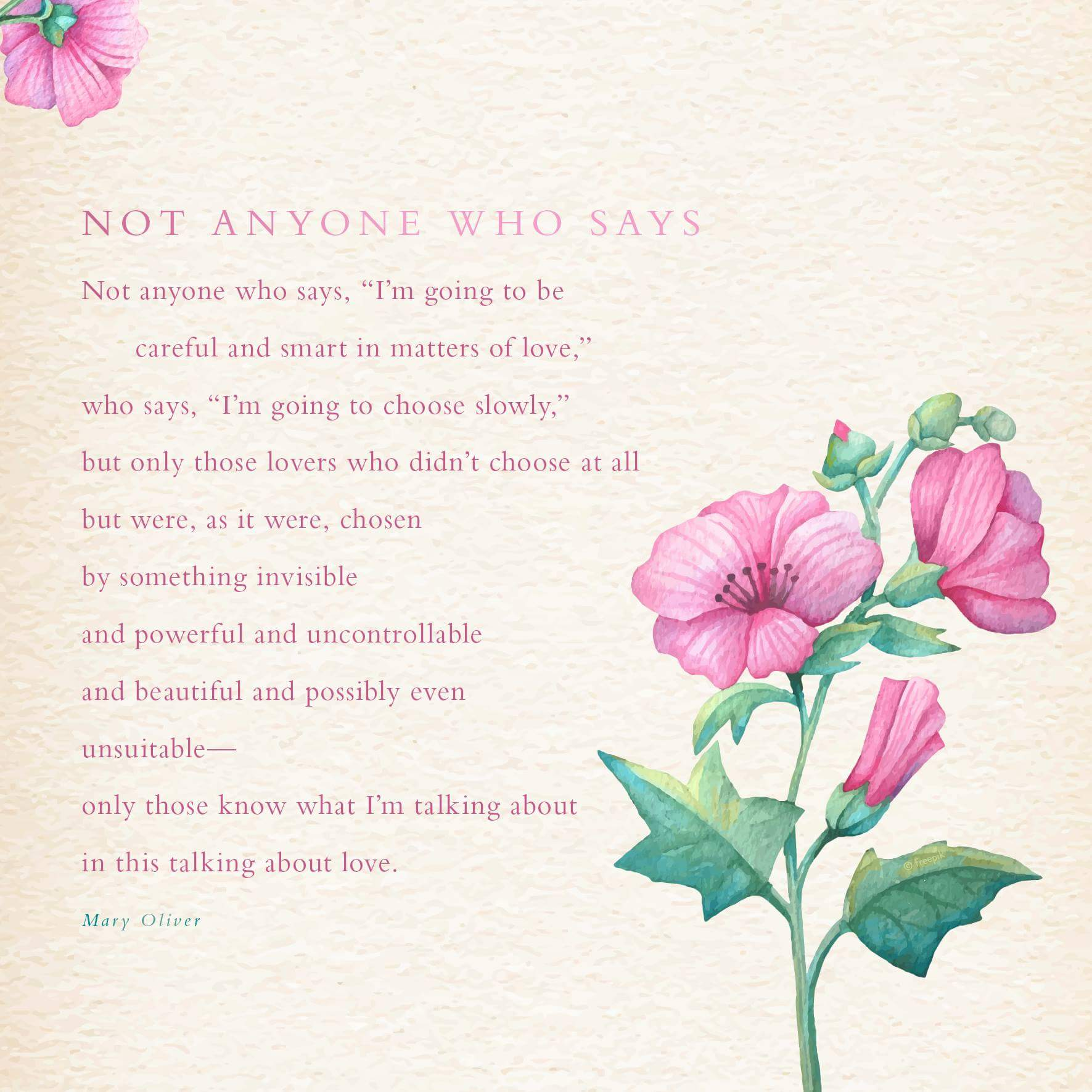 Mary Oliver Love Quotes Not Anyone Who Says A Valentine's Day Poemmary Oliver