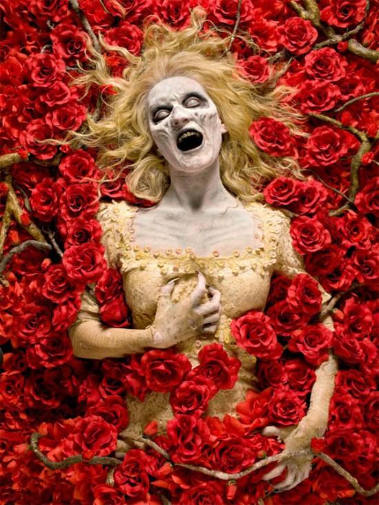 persephone-roses