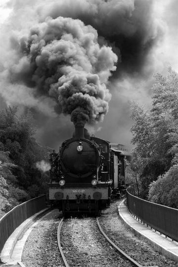 1221231-le-train-a-vapeur-1