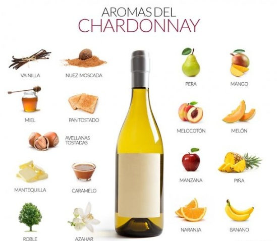 AF-9661_aromas-chardonnay-blog