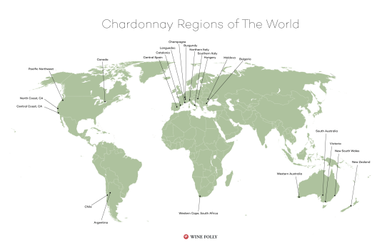 chardonnay-wine-regions-of-the-world