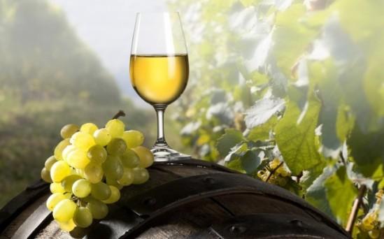 chardonnay-wine-taste1