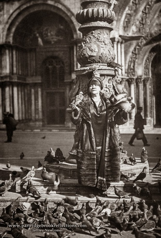 pigeon-postcardEdit
